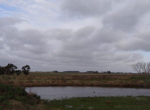 Campo de 9 hectáreas